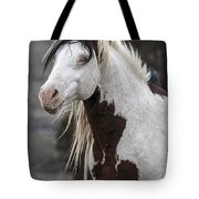 Shaman Portrait Tote Bag