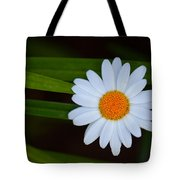 Sharing The Space Tote Bag