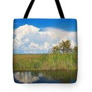 Shark River Slough Tote Bag