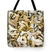 Sharks Teeth Tote Bag