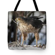 Sharp-shinned Hawk And Feather Tote Bag