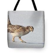 Sharp-tailed Attitude Tote Bag