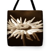 Shasta Daisy Flower Sepia Tote Bag