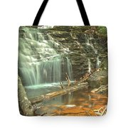 Shawnee Falls At Ricketts Glen Tote Bag