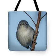 She Sees Me Tote Bag