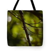 She Waits In Darkness Tote Bag