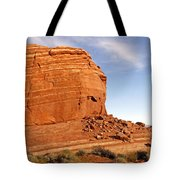 Shear Lined Cliff Tote Bag