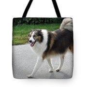 Sheba Tote Bag by Lisa Phillips