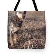 Shed Hunting Tote Bag