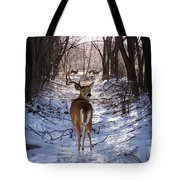 Shedding Time Tote Bag