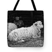 Sheep 2 Tote Bag