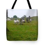 Sheep And Stones At Avebury Tote Bag