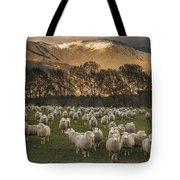 Sheep Flock At Dawn Arrowtown Otago New Tote Bag