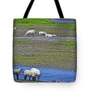 Sheep In Branch-nl Tote Bag