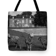 Sheep In French Landscape Tote Bag