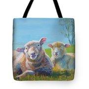 Sheep Lying Down Tote Bag
