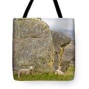 Sheep On A Mountain Pasture Between Granite Rocks Tote Bag