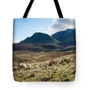 Sheep On Grassland Highlands Scotland Uk Tote Bag