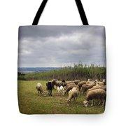 Sheep Pasturing Tote Bag