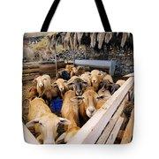 Sheeps Enclosure Tote Bag