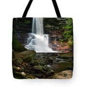Sheldon Reynolds Tote Bag