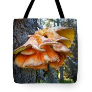Shelf Fungus In Carl E. Wynn Nature Center In Homer-ak   Tote Bag