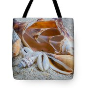Shell Collectors Dream Tote Bag