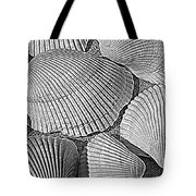Shell Effects 10 Tote Bag