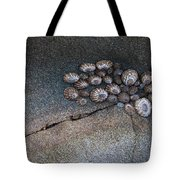 Shell Games Tote Bag