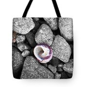 Shell On The Shore 2 Tote Bag
