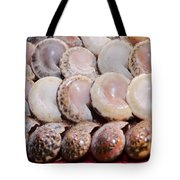 Shells In A Row Tote Bag
