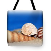 Shells In Sand Tote Bag