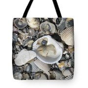 Shells In Shells 1 Tote Bag