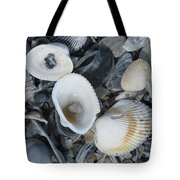 Shells In Shells 2 Tote Bag