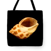 Shells Of The Gulf Coast 8 Tote Bag