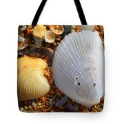 Shells On Sand2 Tote Bag by Riad Belhimer