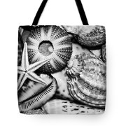 Shellscape In Monochrome Tote Bag