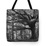 Shelter Me Tote Bag