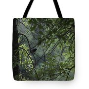 Sheltered From The Rain Tote Bag