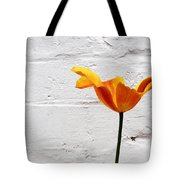 Seriously Orange - Sheltered Tote Bag