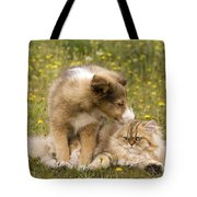 Sheltie Puppy And Persian Cat Tote Bag