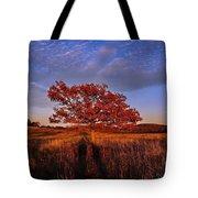 Shenandoah Tree Tote Bag
