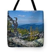 Shenandoah Vista Tote Bag