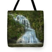 Shenandoah Waterfall Tote Bag