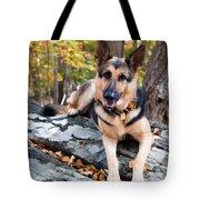 Shepherd In The Fall Tote Bag