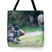 Shepherd's Rest Tote Bag