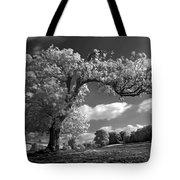 Shepton Tree Tote Bag