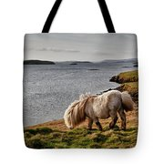 Shetland Pony At Shore  Shetland Tote Bag
