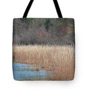 Shimmering Gold Grasslands Tote Bag