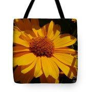 Shine On Me Tote Bag
